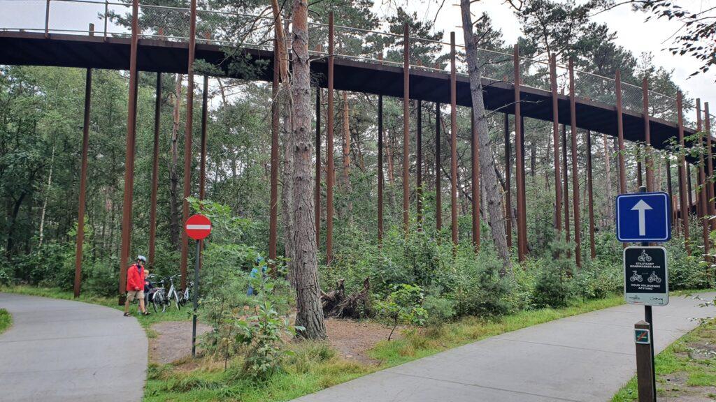 Fietsen door de boomen